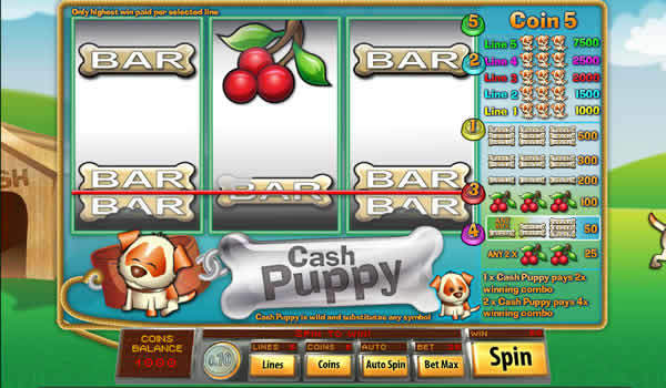 Cash Puppy Saucify Slot