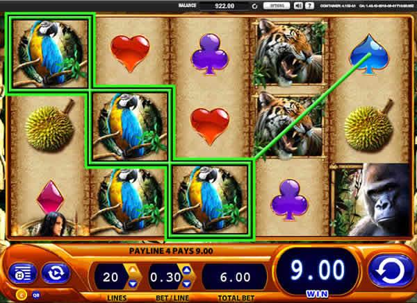 WMS casino software Amazon Queen